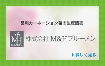 株式会社M&Hブルーメン