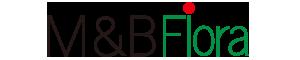 mb logo2