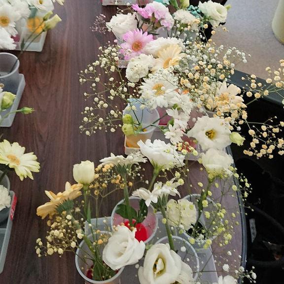 染織剤でカスミソウやユーストマの花を染めています