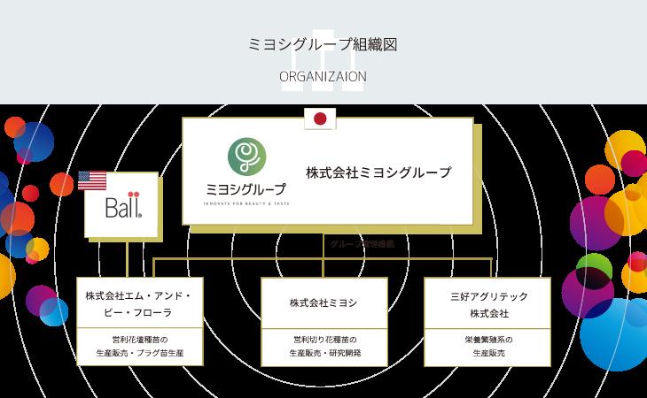 ミヨシグループ組織図